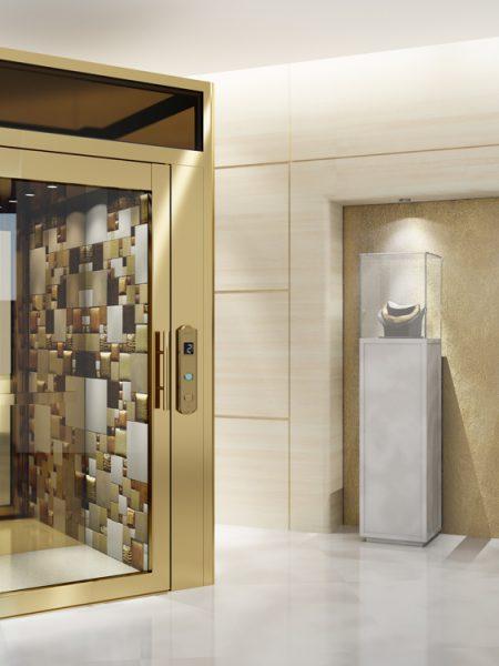 TBO Aufzug-DomusLift-Leather (1)